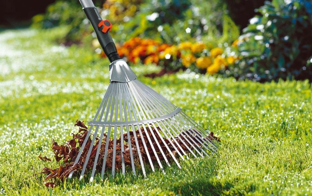 Ландшафтный дизайн: Как сделать газон своими руками на вашей любимой даче