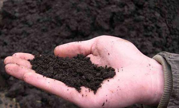 Огород: удобрения