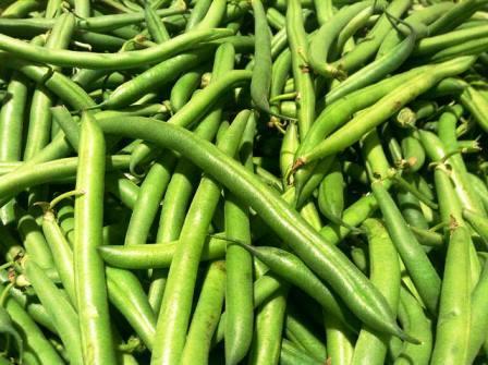 овощная фасоль