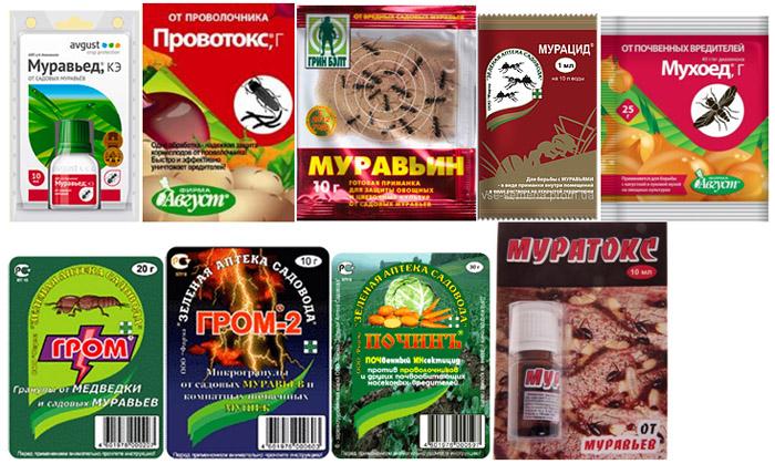 препараты от муравьев