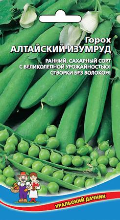 Сорт гороха Алтайский изумруд