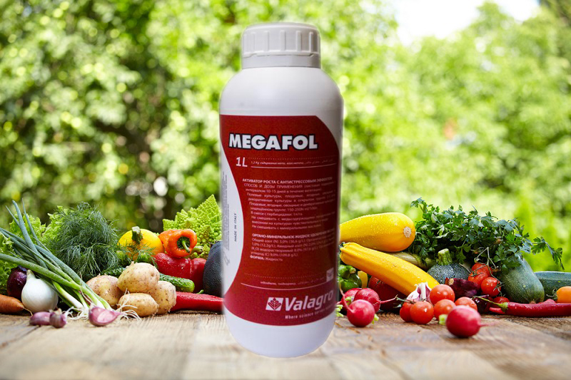 препарат Мегафол