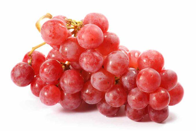 Тайфи розовый виноград