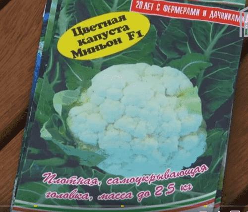 Paket s semenami cvetnoj kapusty