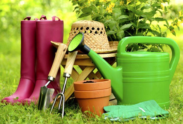 Календарь садовода и огородника на май