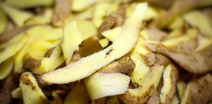 Картофельные очистки для смородины