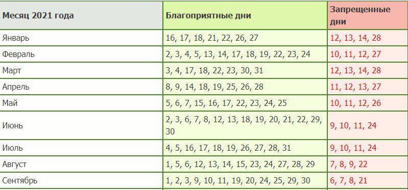 Посадка огурцов на рассаду в 2021 году какого числа календарь