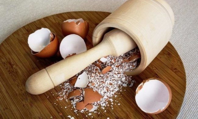 Подкормка для рассады перца в домашних условиях