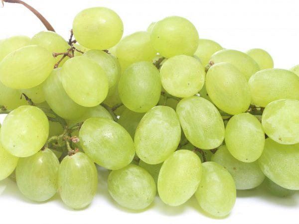 Виноград положительно влияет на человека
