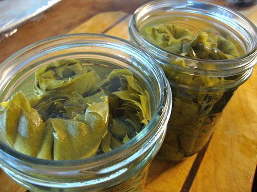 Виноградные листья в маринаде